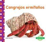 Abdo Cangrejos Ermitanos (hermit Crabs)