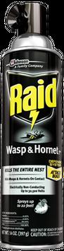 Raid Wasp & Hornet Killer 33
