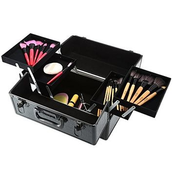 Docooler Lockable Cosmetic Organizer, Box Foldable Makeup Train Storage Case Holder, 2 Layers (Black)