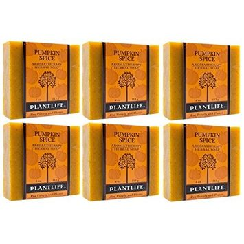 Pumpkin Spice Soap Value Pack - 100% Pure & Natural Aromatherapy Herbal Soap - 4 oz (113g) Each Bar (Pack of 6 Bars)
