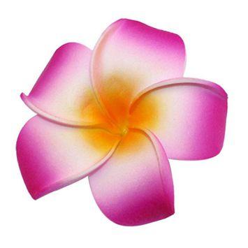 Coxeer Hair Clips Flower Bohemia Style Frangipane Hawaiian Vacation Beach Hair Barrettes Accessories for Women