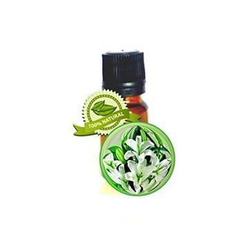 Lily Absolute Essential Oil - 100% PURE Lilium Auratum - 10ml (1/3oz)