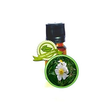 Wild Musk Rose Essential Oil - 100% PURE Rosa Moschata - 5ml (1/6oz) -Skin Nourishing,Stretchmarks,Wrinkles, Anxiety, Depression, Eczema, Psoriasis, Sunburn, Anti-aging, Sensitive or Dry Skin, Acne