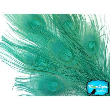 Peacock Feathers, Aqua Green Peacock Tail Feathers - Dyed Feathers - 5 Feathersper Pack , Moonlight Feather