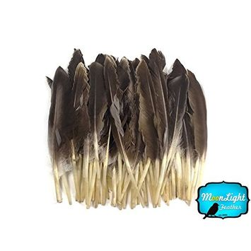 1/4 lbs - Natural Brown Duck Pointer Primary Wing Wholesale Feathers (bulk) Craft Halloween Supply   Moonlight Feather