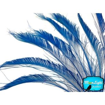 Peacock Feathers - Turquoise Blue Peacock Feathers, Peacock Swords