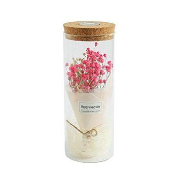 Lotus.flower Miniature Landscape Festival Birthday Gift Romantic Simulation Gypsophila Glass Cover Led Micro Landscape
