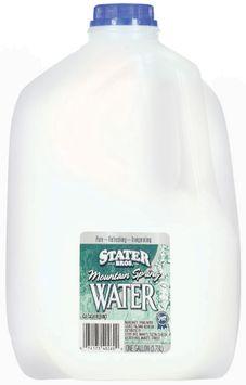Stater Bros. Mountain Spring Water