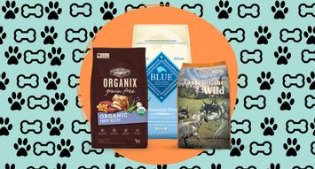 The Best Dog Foods For Puppies: 197K Reviews