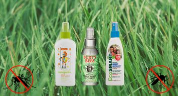 The Best Insect Repellents for Children