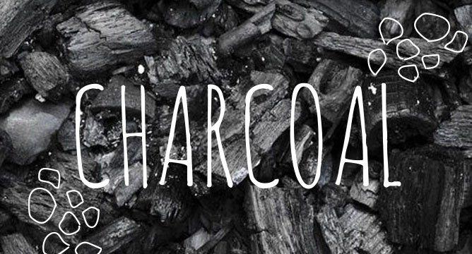 Ingredient Breakdown: Charcoal