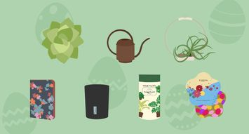 Spring Gifts for the Plant Lover in Your Life
