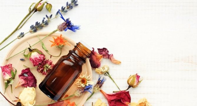 7 Essential Oils to Diffuse Before Bedtime