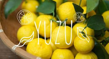 You Should Probably Add Yuzu to Your Skincare Routine