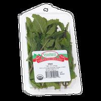 Goodness Greeness Mint Herbs - Organic