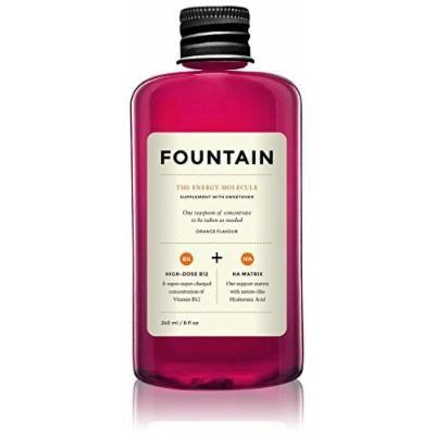 Fountain The Energy Molecule-8 oz
