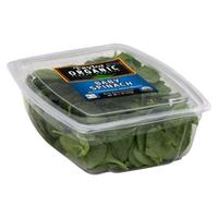 Taylor Organic Baby Spinach 5 oz