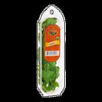 The Herbal Garden Organic Mint