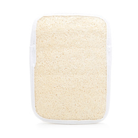 Swissco Loofah and Terry Bath Mitt with Soap Pouch