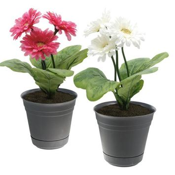 Southern Patio 2 Dynamic Design Self-Watering 7 Planter Flower Pot Prevent Plant Root Rot Gray