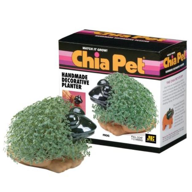 Slide: CHIA Pet Frog
