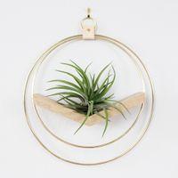 V-Shaped Plant Hanger