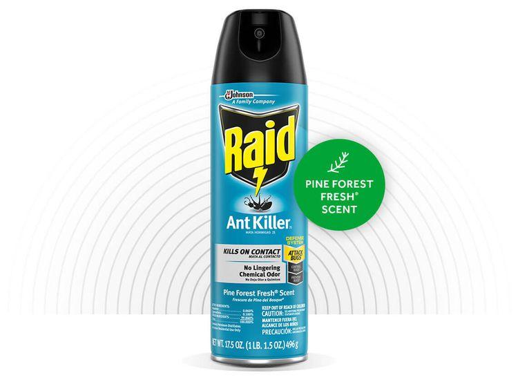 RAID® ANT KILLER 26