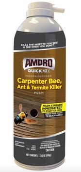 Amdro Quick Kill Carpenter Bee, Ant & Termite Killer Foam