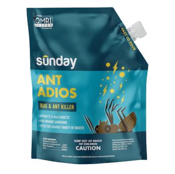 Sunday Ant Adios
