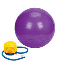 Sivan Health And Fitness Yoga 26-inch Balance Ball with Foot Pump