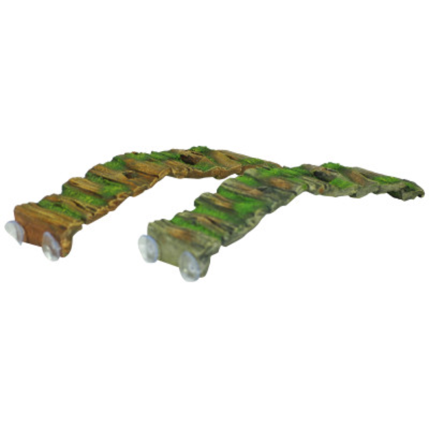 All Living ThingsA Hollow Wood Reptile Ramp