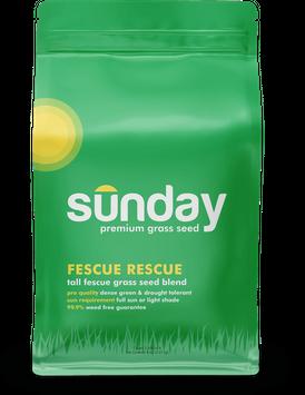 Sunday Fescue Rescue
