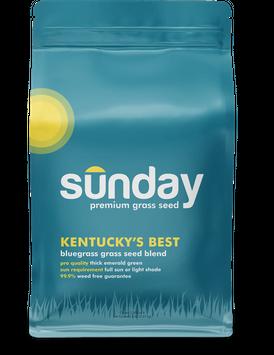 Sunday Kentucky's Best