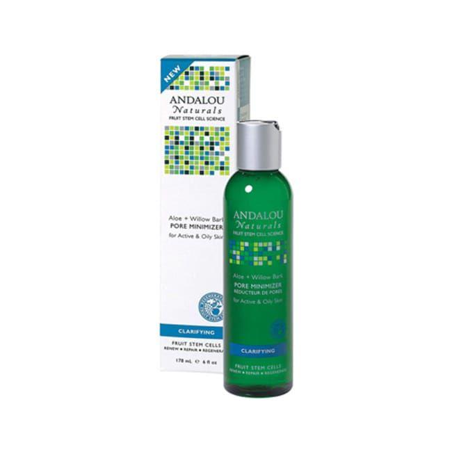 Aloe + Willow Bark Pore Minimizer