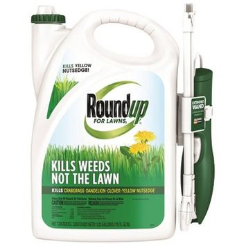 Roundup For Lawns Northern Herbicide With Wand - 1.33 gal