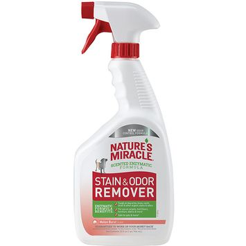 Nature's Miracle Stain and Odor Remover for Dog - Melon Burst Scent