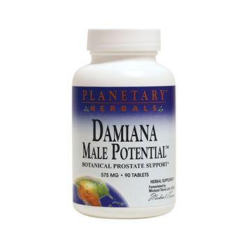 Damiana Male Potential