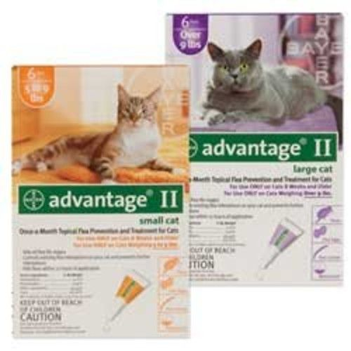 Bayer Animal Health Advantage Once-A-Month Topical Flea Treatment for Cats