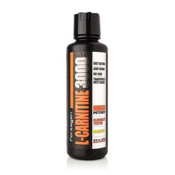Forzagen Liquid L-Carnitine 3000mg - Mango
