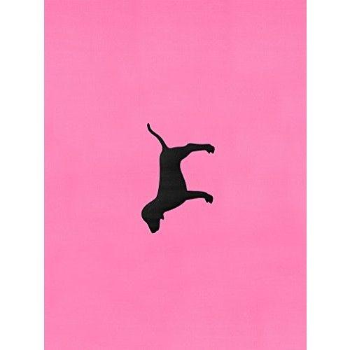 Victorias Secret PINK Yoga Mat Pink Rally