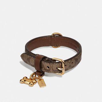 Coach Small Pet Collar