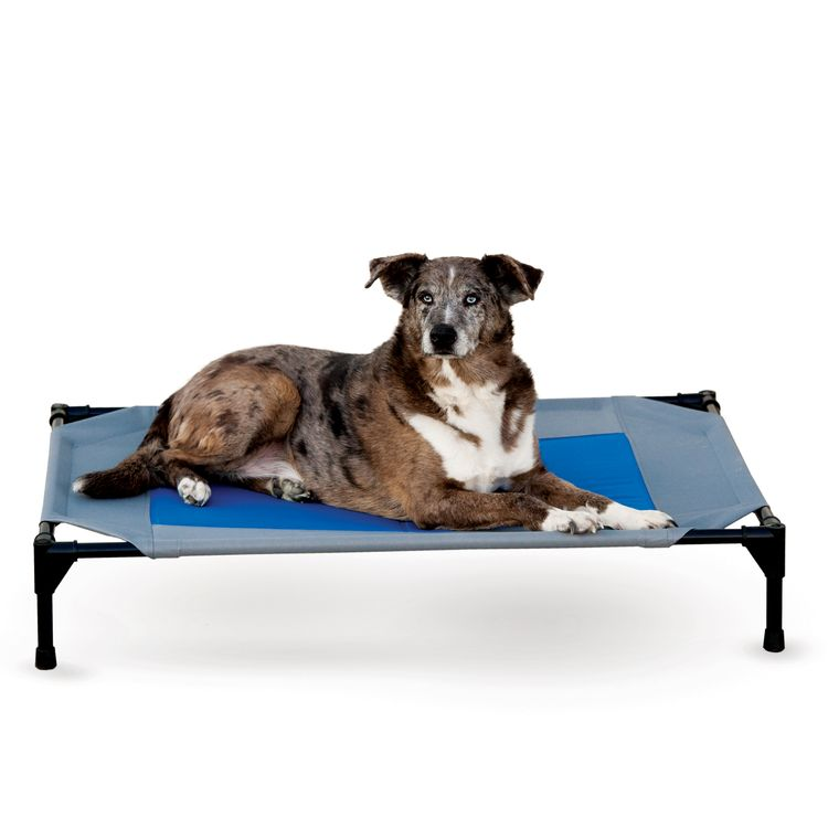 K&H Pet Products Coolin' Pet Cot Elevated Pet Bed Retail Box Gray/Blue Large 30 X 42 X 7 Inches