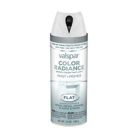 Valspar Color Radiance White Indoor/Outdoor Spray Paint 407.0084510.076