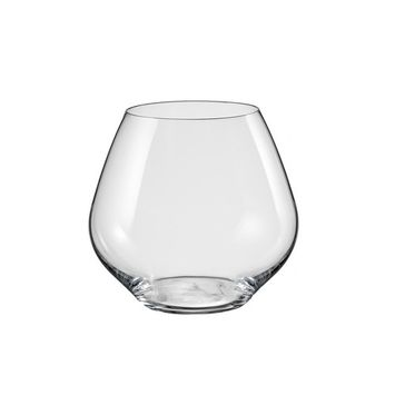 Amoroso Stemless Red Wine Glass 19.5 Oz Set of 2