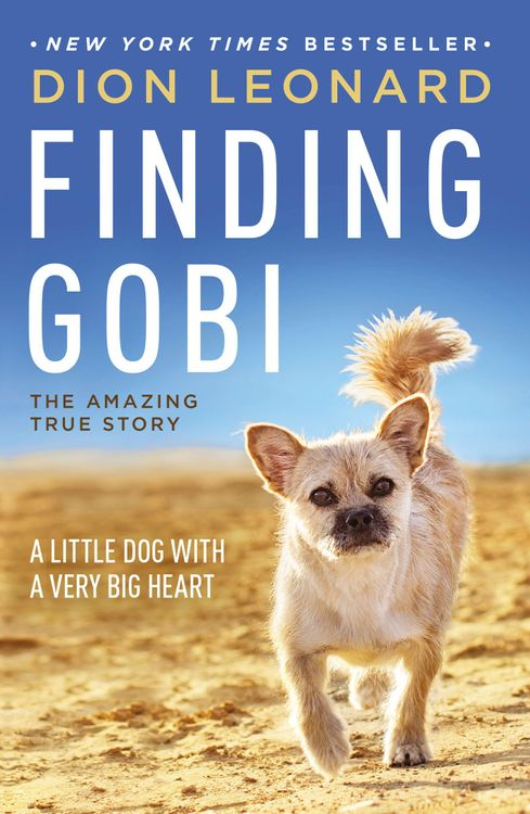 Finding Gobi : A Little Dog With a Very Big Heart (Paperback) (Dion Leonard)