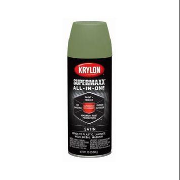 Krylon Diversified Brands 6 Packs 12OZ Fern Sat PRM Paint