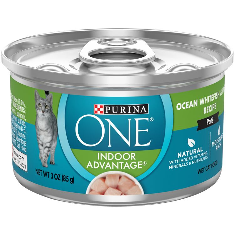 Purina ONE Indoor, Natural, High Protein Pate Wet Cat Food; Indoor Advantage Ocean Whitefish & Rice