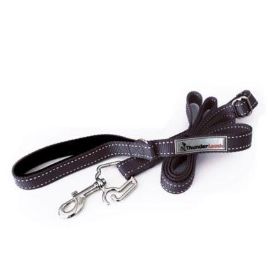 ThunderLeash™ Extra Small No-Pull Dog Leash in Black