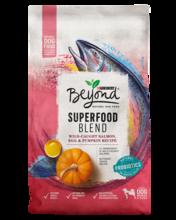 Beyond Superfood Blend Salmon, Egg & Pumpkin Recipe Dry Dog Food