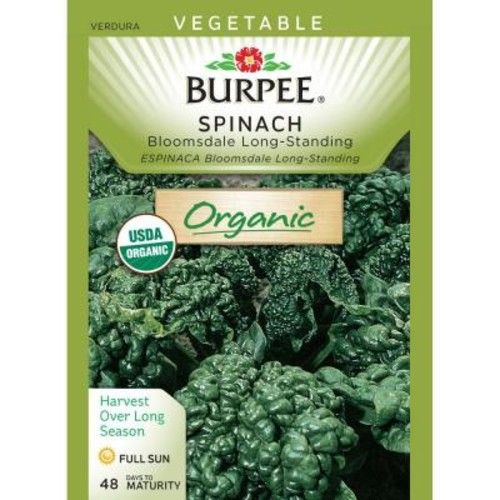 Burpee Organic Spinach Bloomsdale Long-Standing Seed
